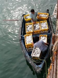Lobitos fishermen
